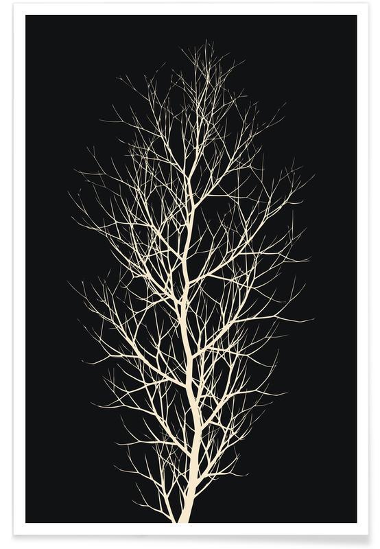 Bomen, Zwart en wit, Beauty of Silence poster