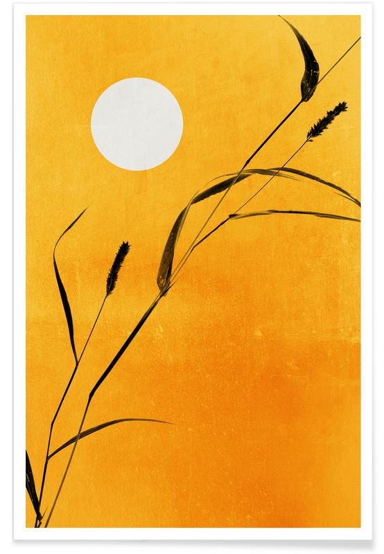 Sunsets, Sunny Side Poster