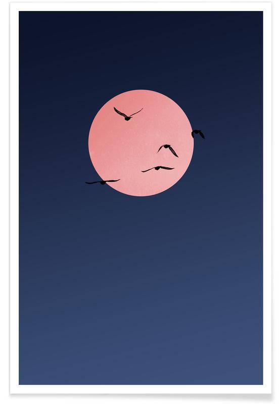 , Summer Nights poster