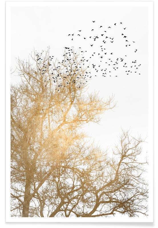 Trees, Golden Skies Poster
