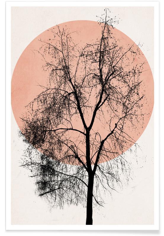 Trees, Atumn Sunset Poster
