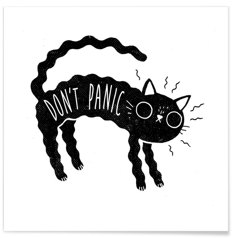 Chats, Don't Panic affiche