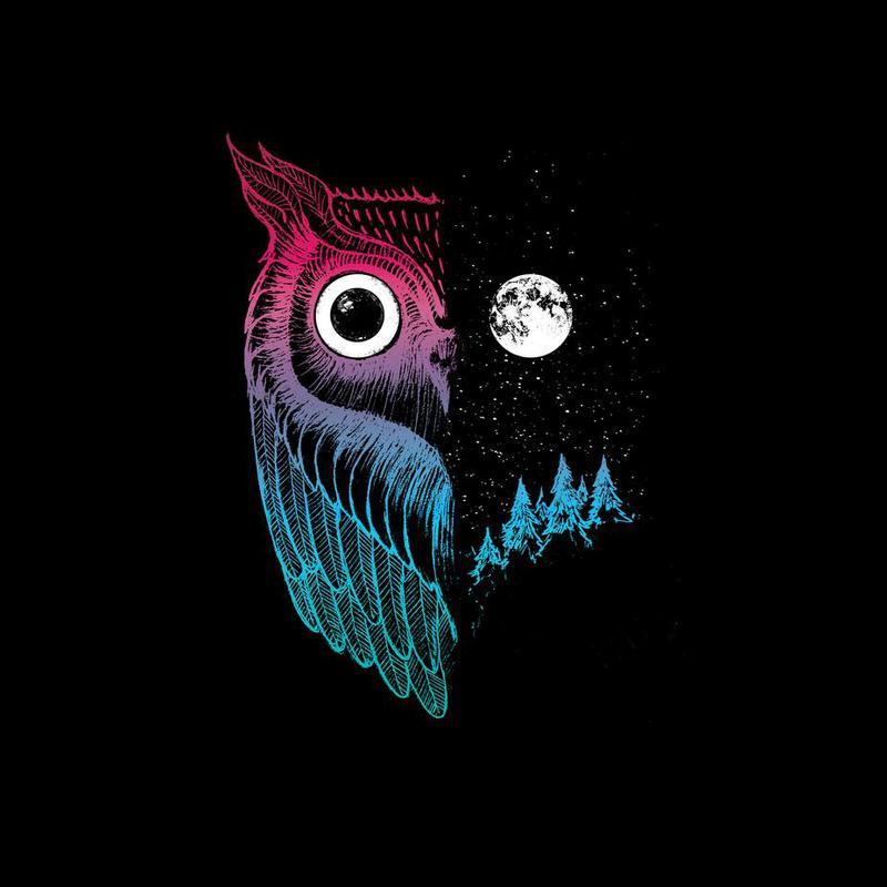 Night Owl Impression sur alu-Dibond