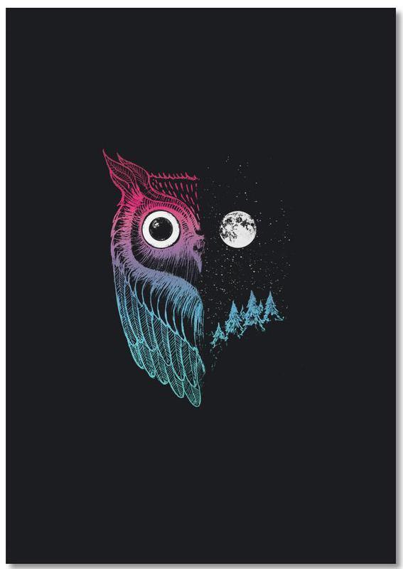 Owls, Night Owl Notebook