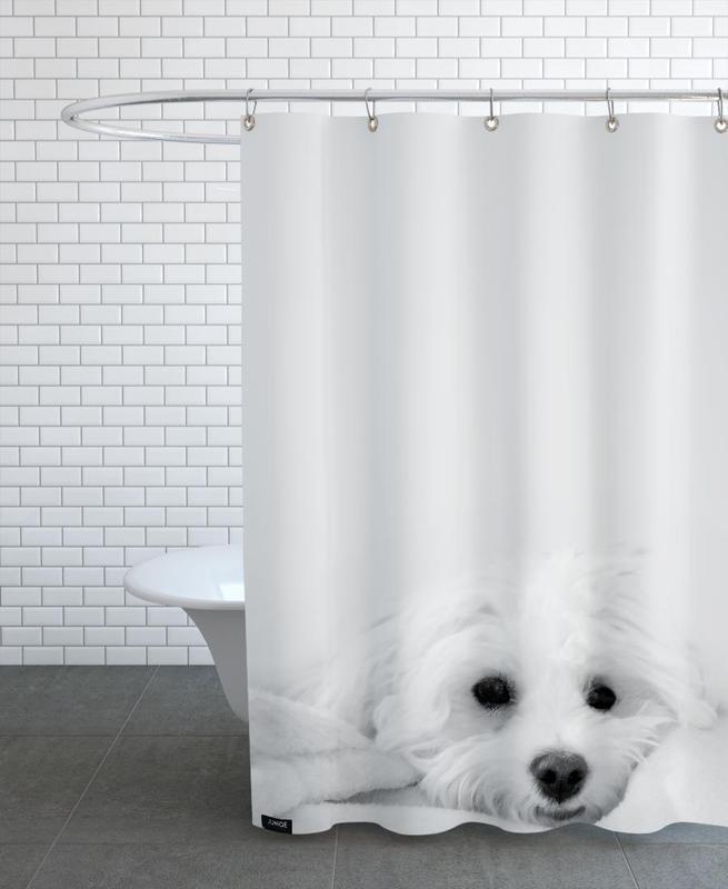 Chiens, Walli rideau de douche