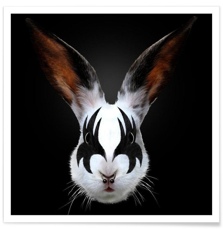 Kiss Of A Rabbit affiche