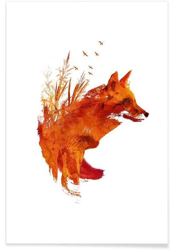 Renards, Plattensee Fox affiche