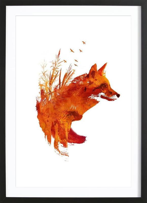Plattensee Fox ingelijste print