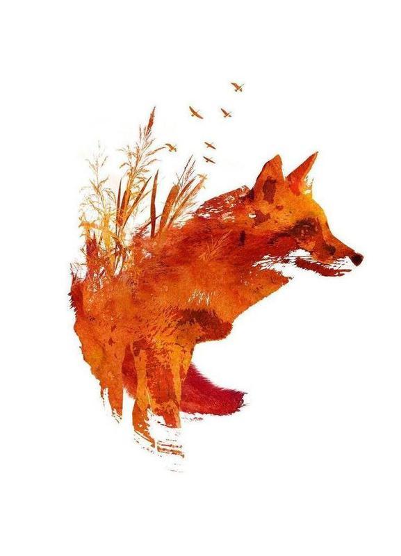 Plattensee Fox canvas doek