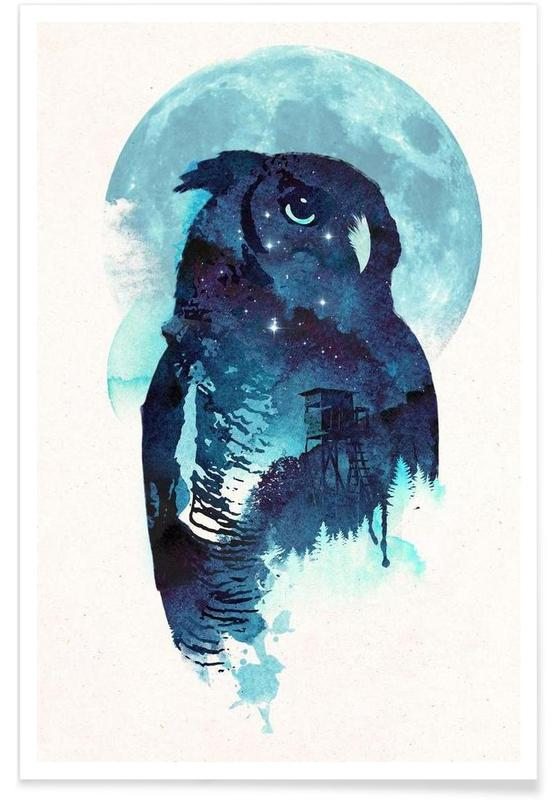 Chouettes, Midnight owl affiche