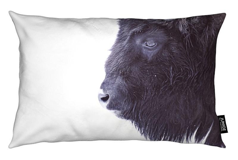 Buffalos, Black Buffalo