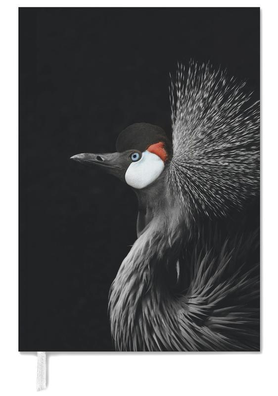 Kraanvogels, Black Crowned Crane agenda