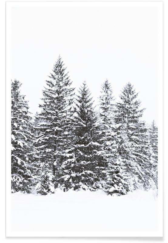 Noir & blanc, Forêts, Arbres d'hiver noirs affiche