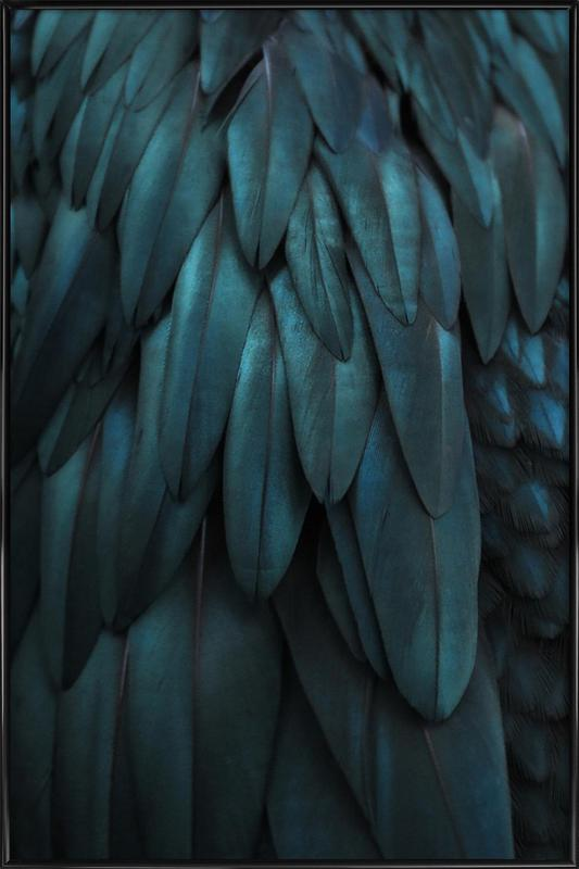 Dark Feathers Framed Poster