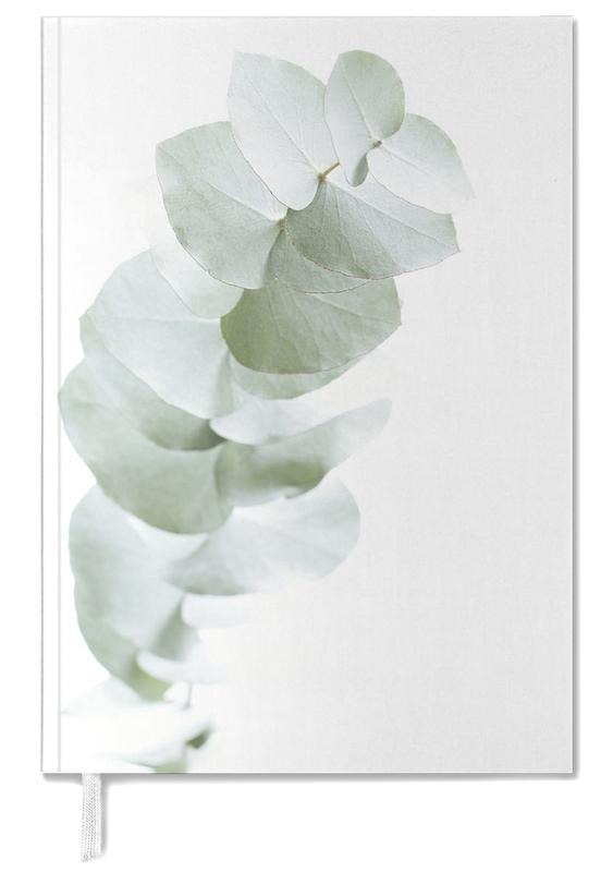 Eucalyptus White 1 -Terminplaner
