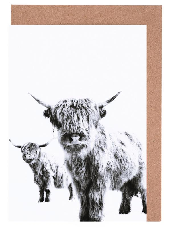 Highland Cows Greeting Card Set