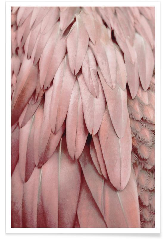 Pastel Feathers affiche