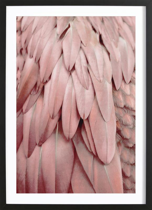 Pastel Feathers Framed Print