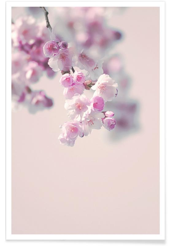 Pastel Rose Cherry II Poster