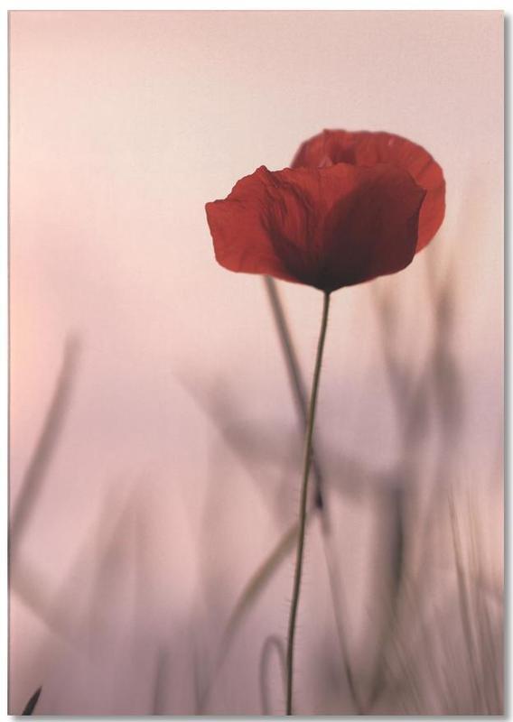 , Rose Papermoon -Notizblock