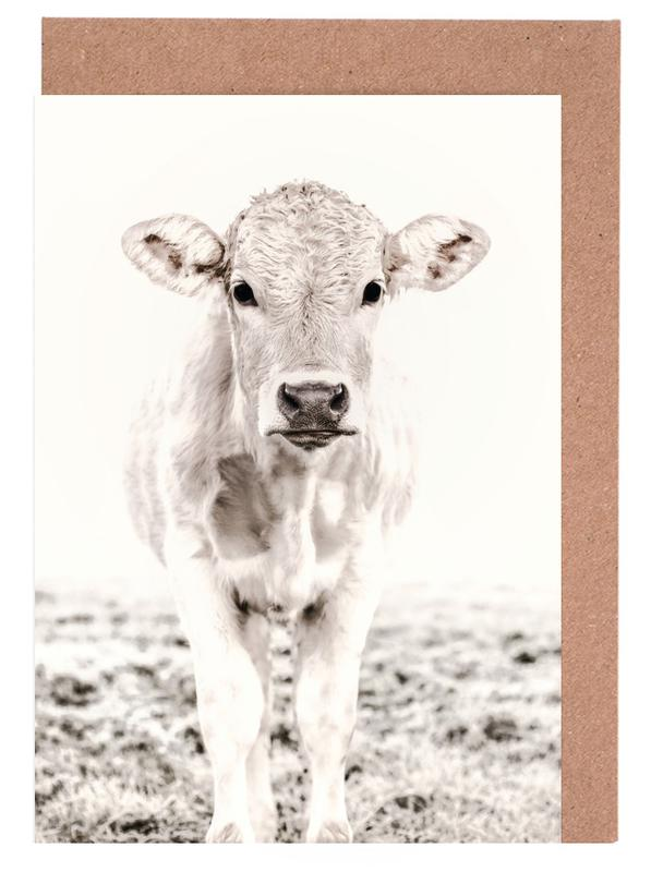 Kühe, Blonde Cattle Maverick -Grußkarten-Set