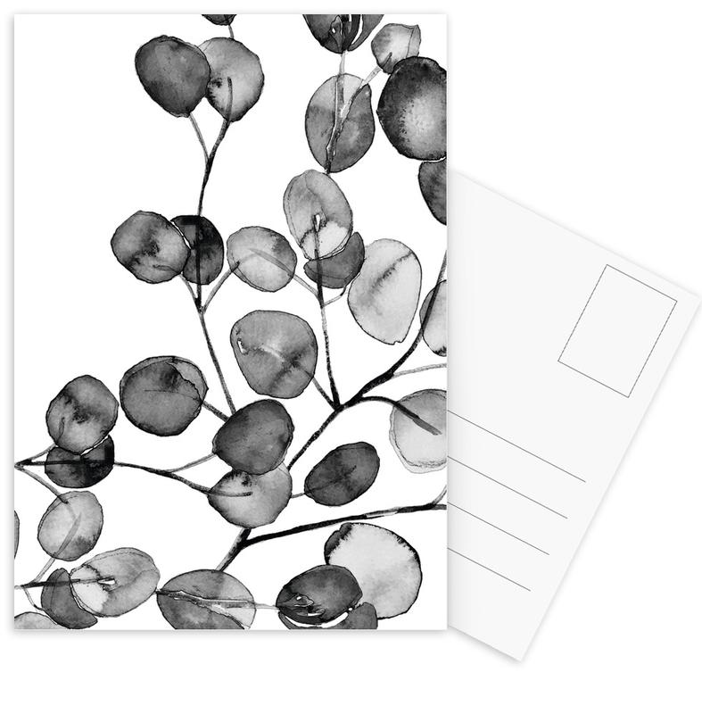 Eucalyptus Watercolor Black & White Postcard Set