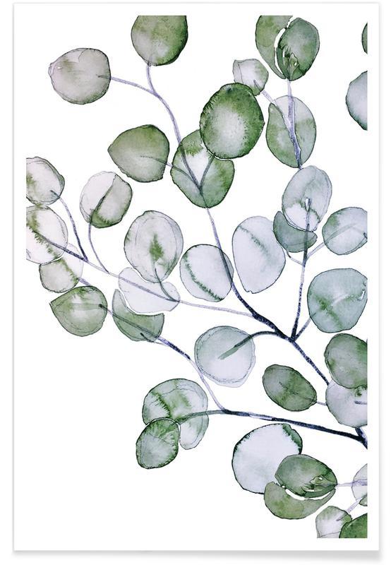 Feuilles & Plantes, Aquarelle d'eucalyptus affiche