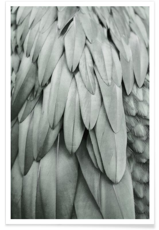 Plumes, Feathers Eucalyptus Green affiche