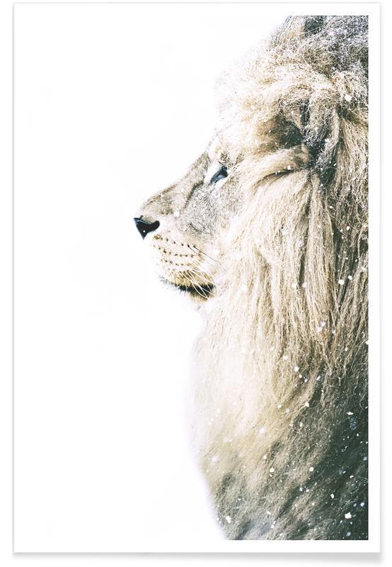 Leeuwen, Lion ín Snow poster