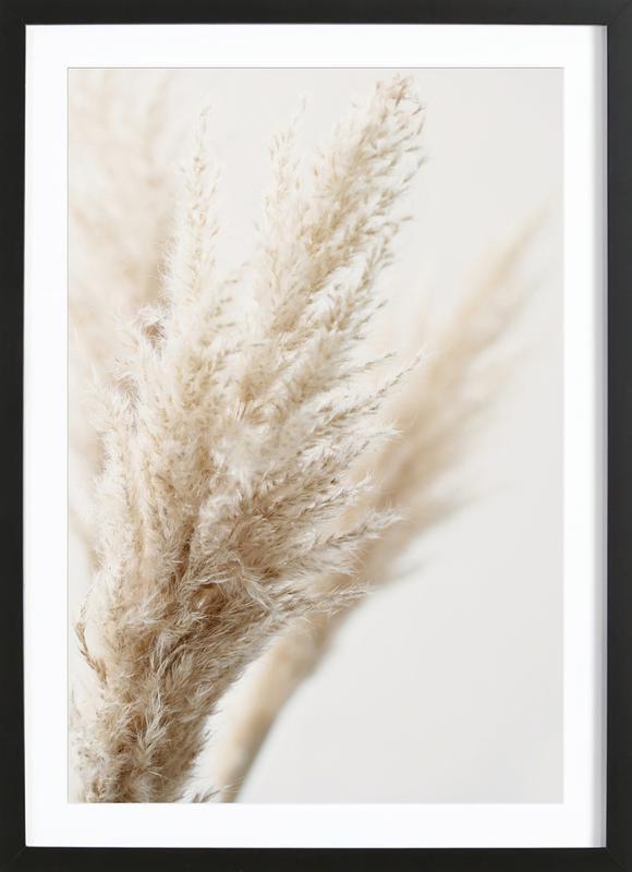 Pampas Reed 03 -Bild mit Holzrahmen