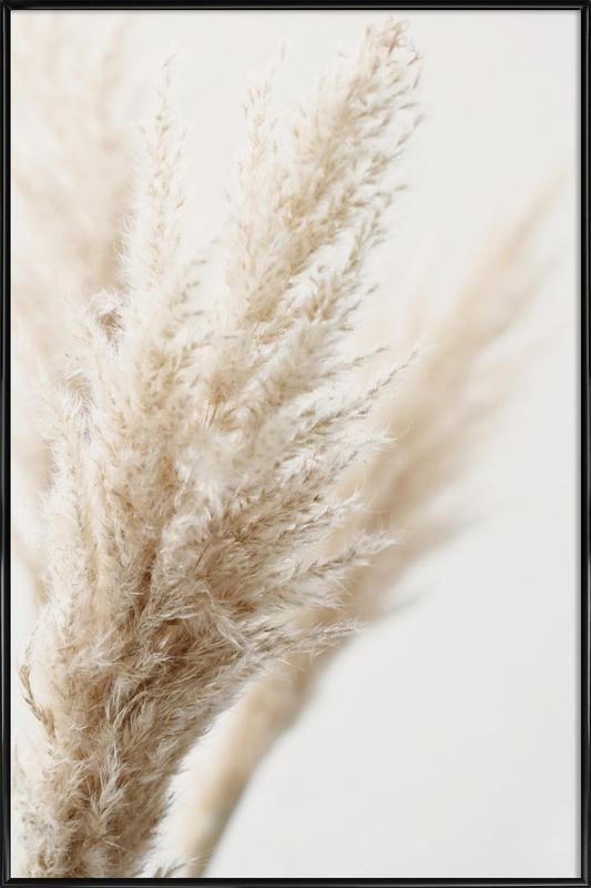 Pampas Reed 03 -Bild mit Kunststoffrahmen