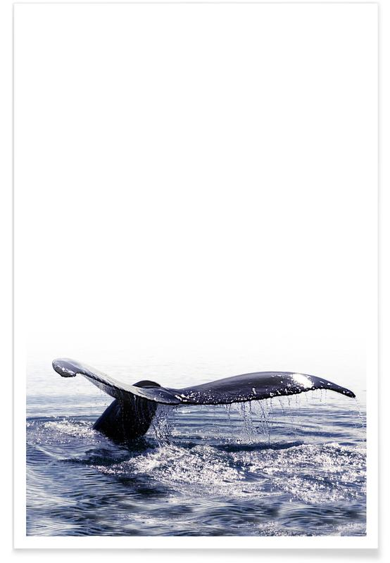 Wale, Whale Song Iceland -Poster