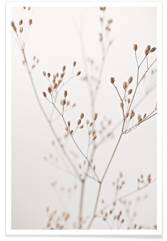 , Wild Flower Natural Beige 1 Plakat