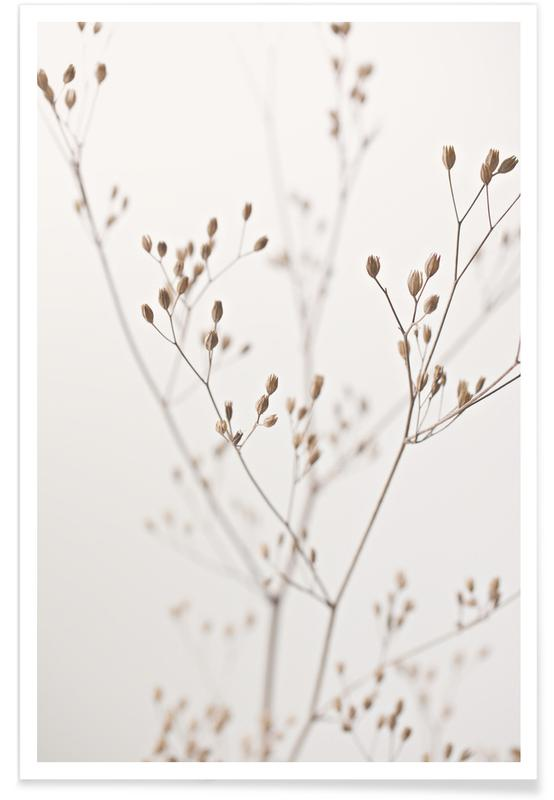 Wild Flower Natural Beige 1 Poster