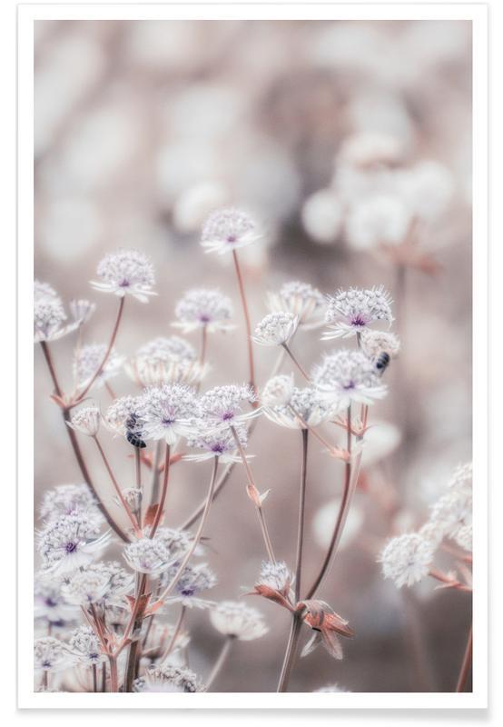 Wild Flower Pastel 04 -Poster
