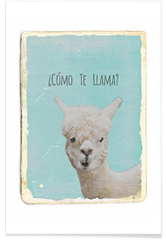 Lama, Humor, Como te Llama? Plakat