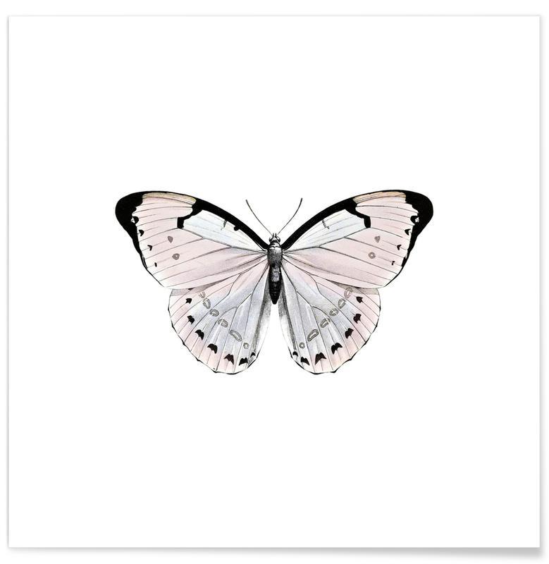 Kunst voor kinderen, Vlinders, Papillion Rose poster