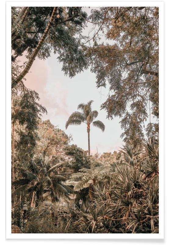 Bäume, Madeira Garden -Poster