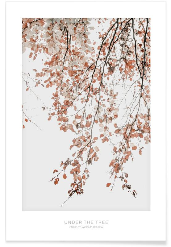 Arbres, Under the Tree Fagus Syl affiche
