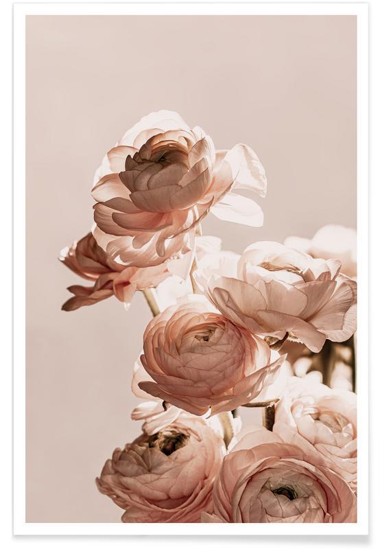 , Flower Dance Ranunculus Poster