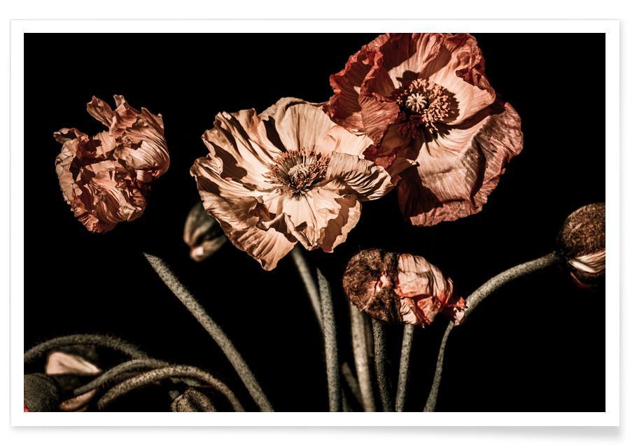 , Dark Flowers Bouquet poster