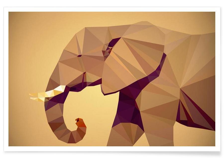 Safari dyr, Loxodonta africana Plakat