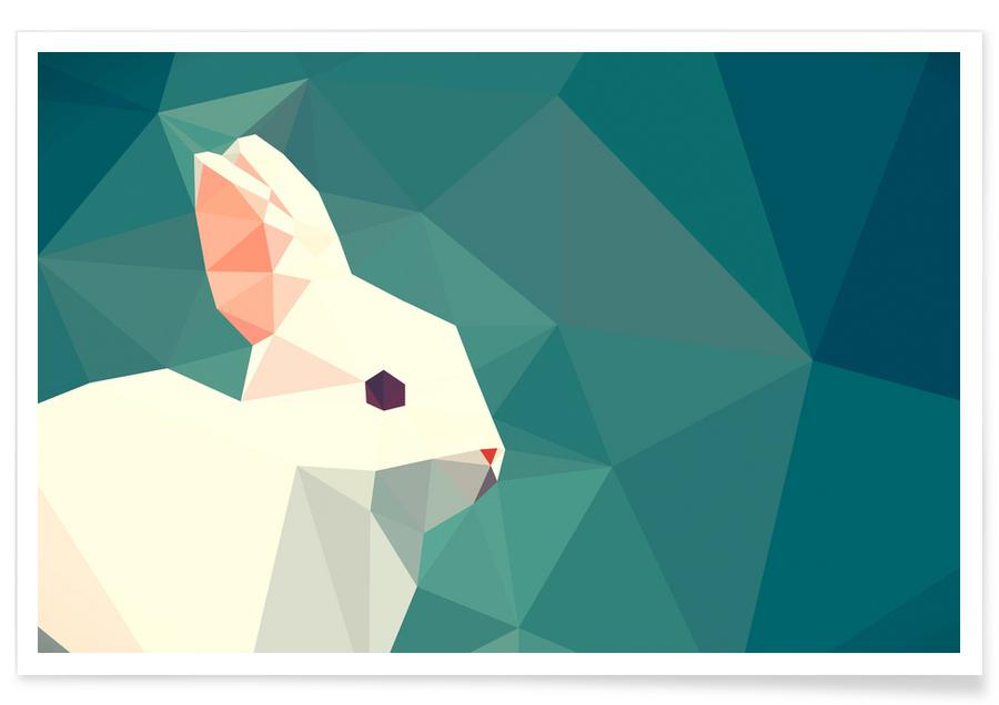 Oryctolagus cuniculus -Poster