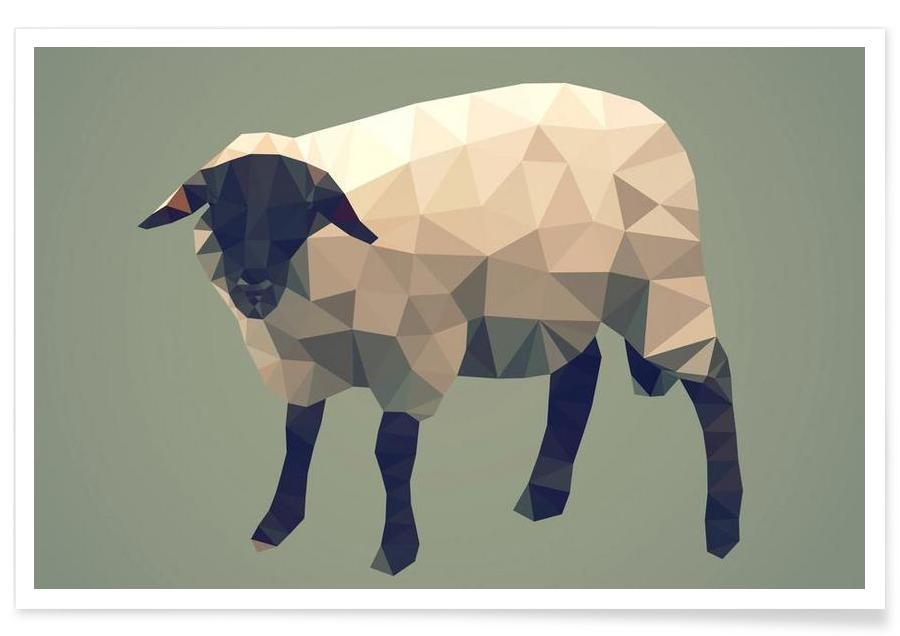 Moutons, Ovis aries affiche