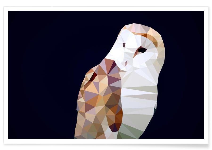 Chouettes, Tyto alba affiche