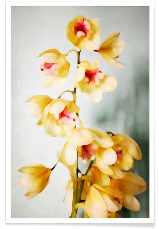 , Orchids 2 poster