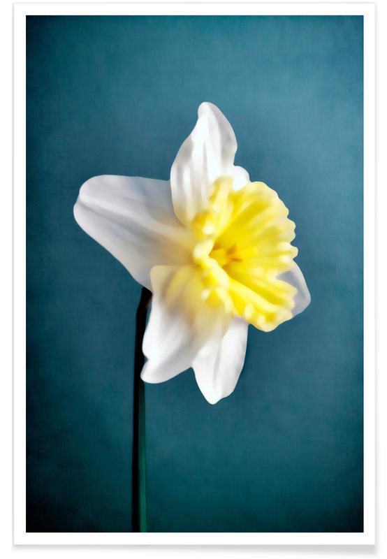 , Narciso 9 Poster