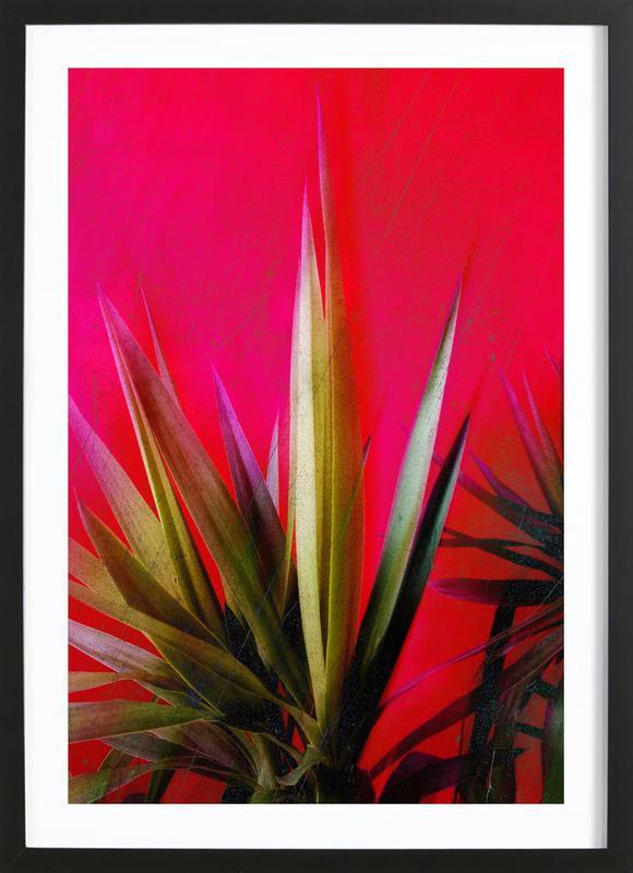 Vivid Pink Framed Print
