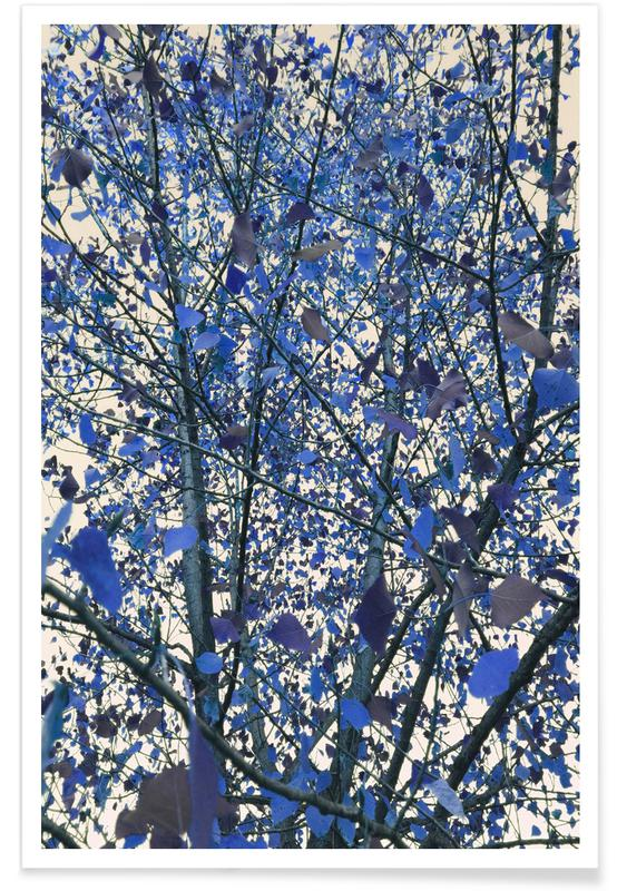 Bladeren en planten, Bomen, Blue November poster