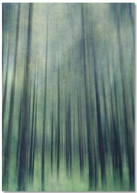 Green Woods Ascent Notebook